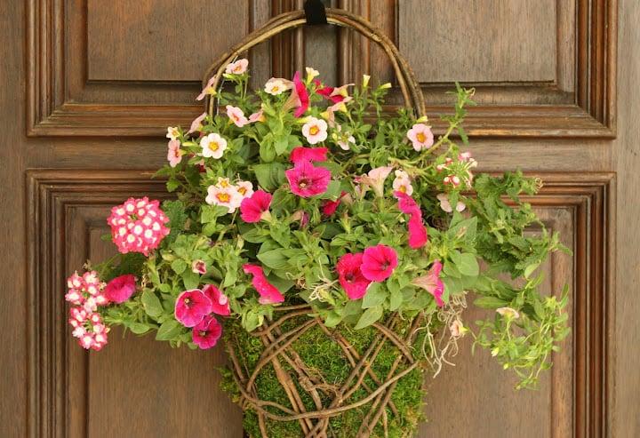 moss basket, flower basket, flowers,
