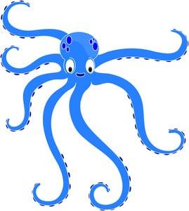 Octopus Image-Octopus