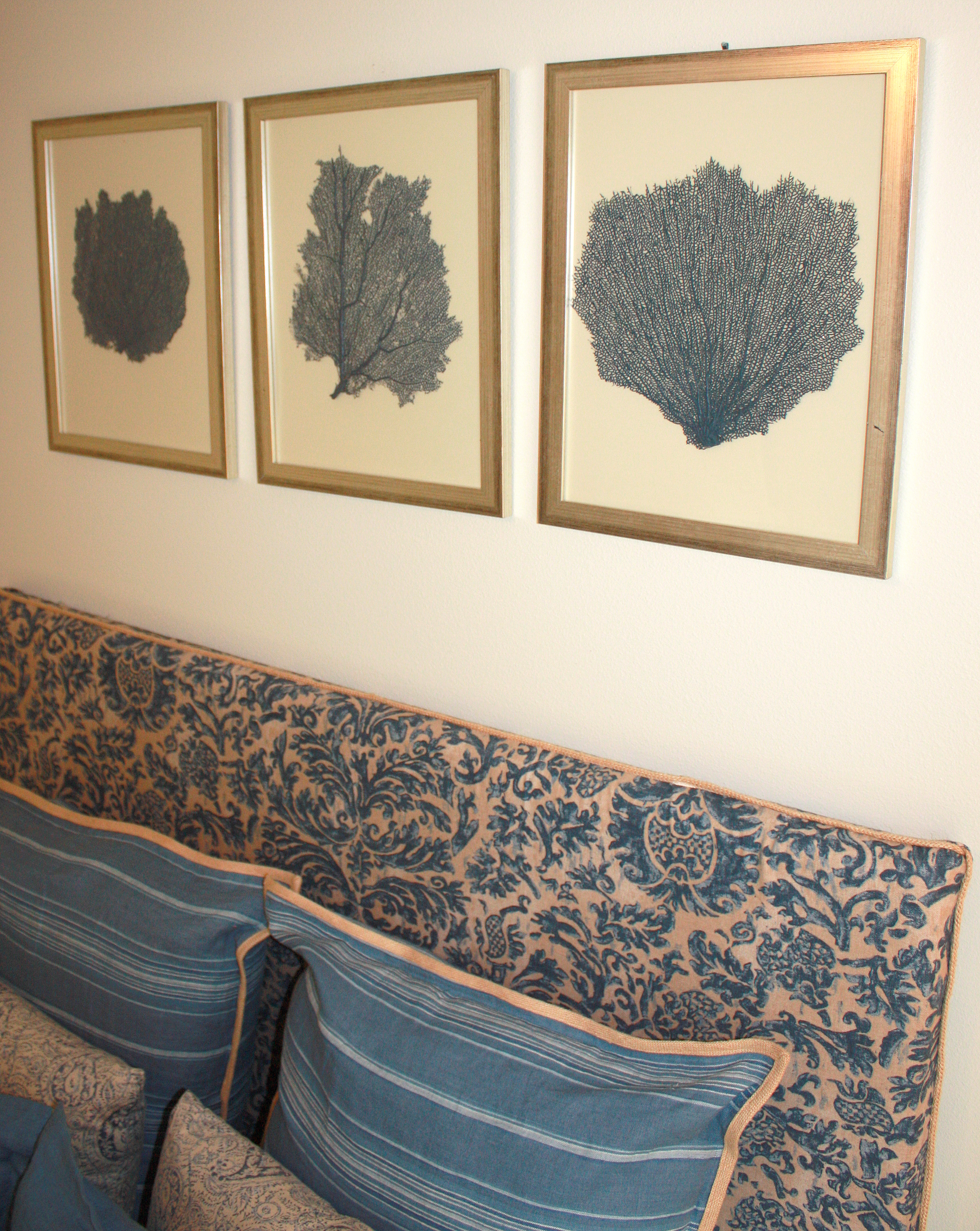 Painted and framed sea fan collections sea fans painted sea fans framed fans amipublicfo Images