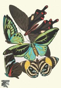 new york public library free art online