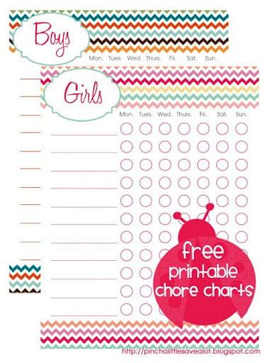 Printable Chore Chart- Back to School Ideas- Organization- Kids