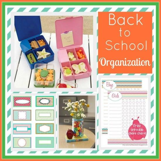 Organization- Back to School-