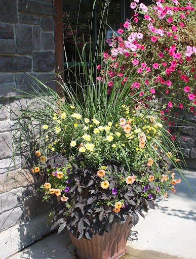 Teton Mountain Lodge and Spa- Fall Container Planting- Gardening
