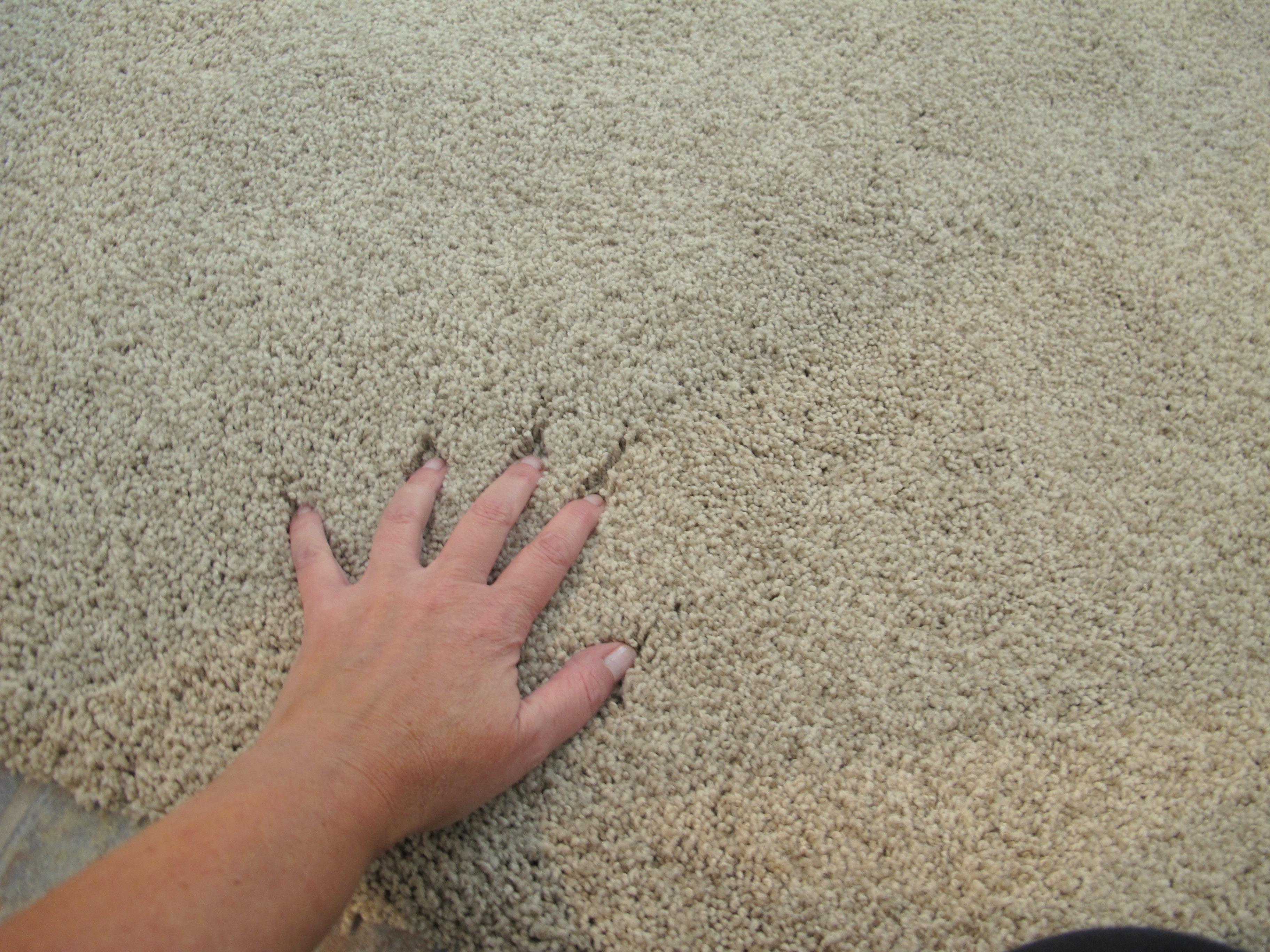Frieze Carpet Ideas