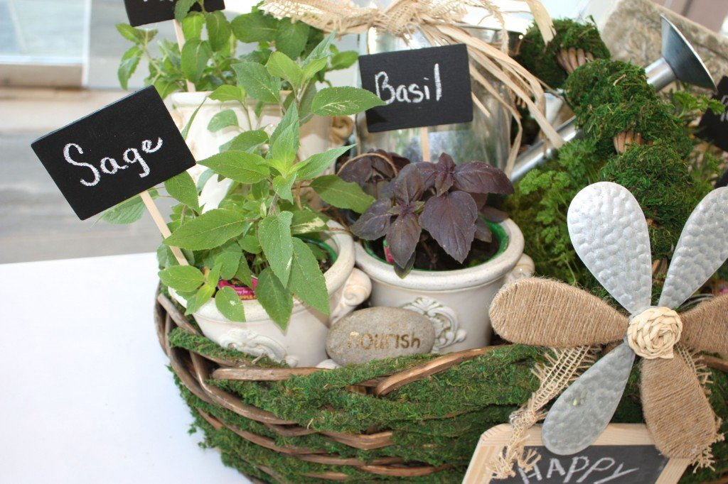 Herb Filled Moss Basket