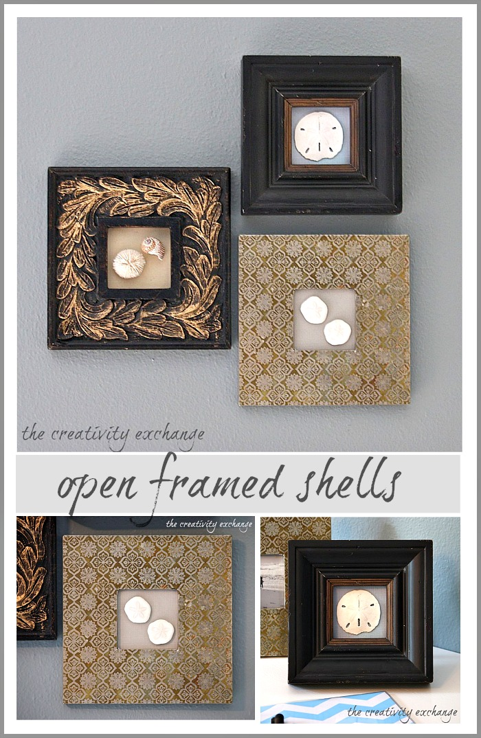 display special shells in open frames