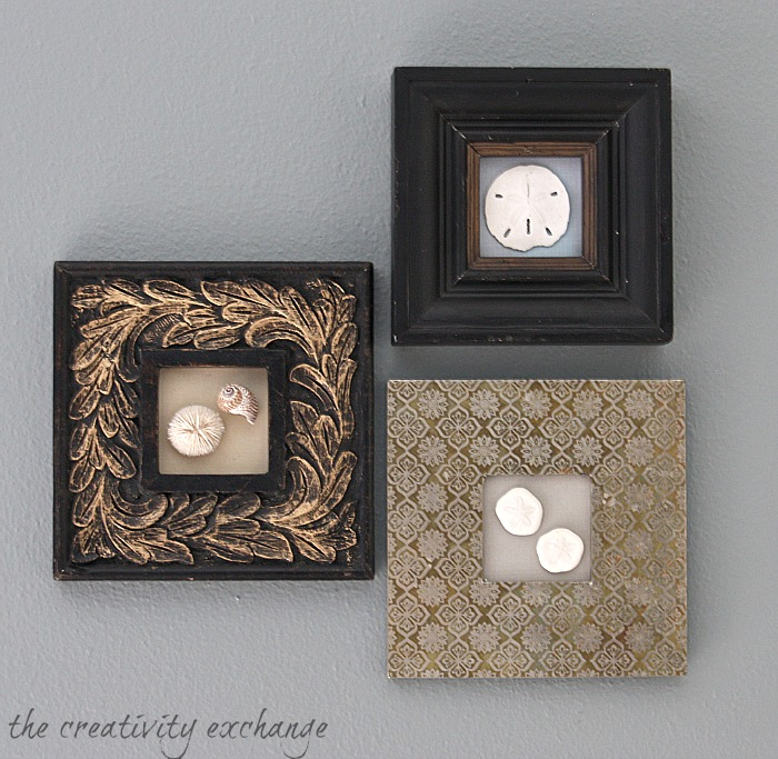 display special shells in small open frames the creativity exchange
