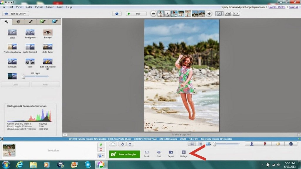 How to make a collage in Picasa {The Creativity Exchange}