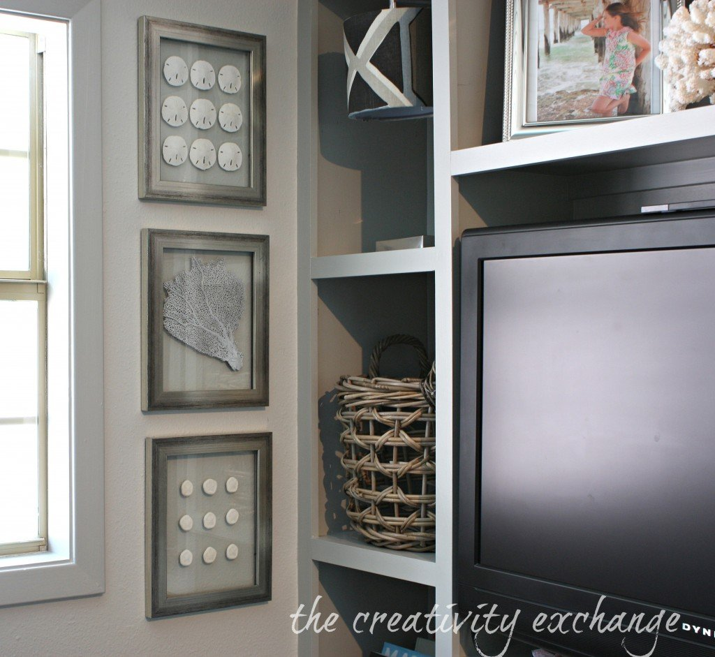DIY Double-Sided Glass Frames for Shell Collections {The Creativity Exchange}