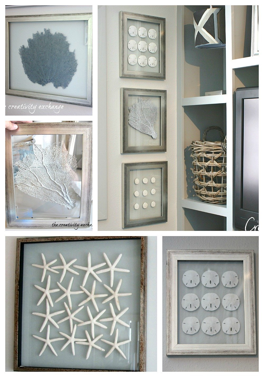 Framing sea fans, sand dollars and shells in double sided framed glass.