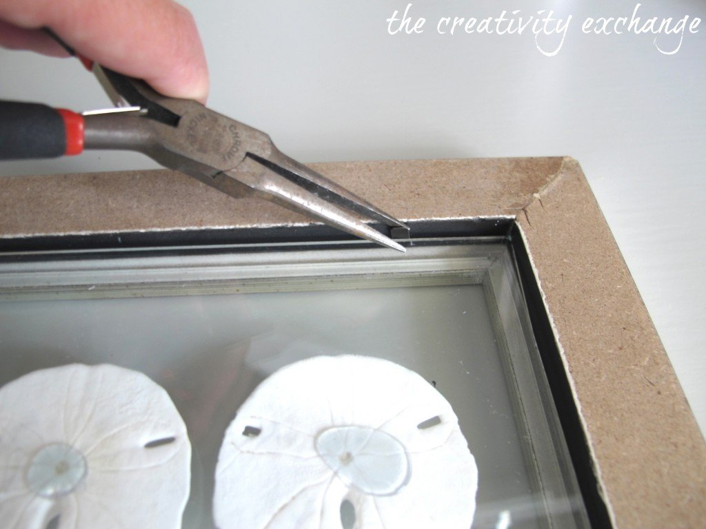 How to DIY double-sided glass frames for displaying shell collections {The Creativity Exchange}