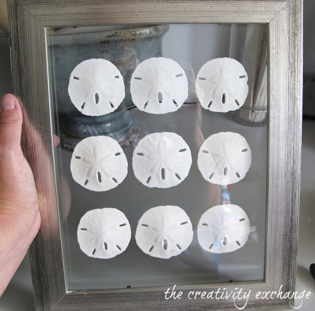 How to make double sided glass frames for displaying shell collections {The Creativity Exchange}