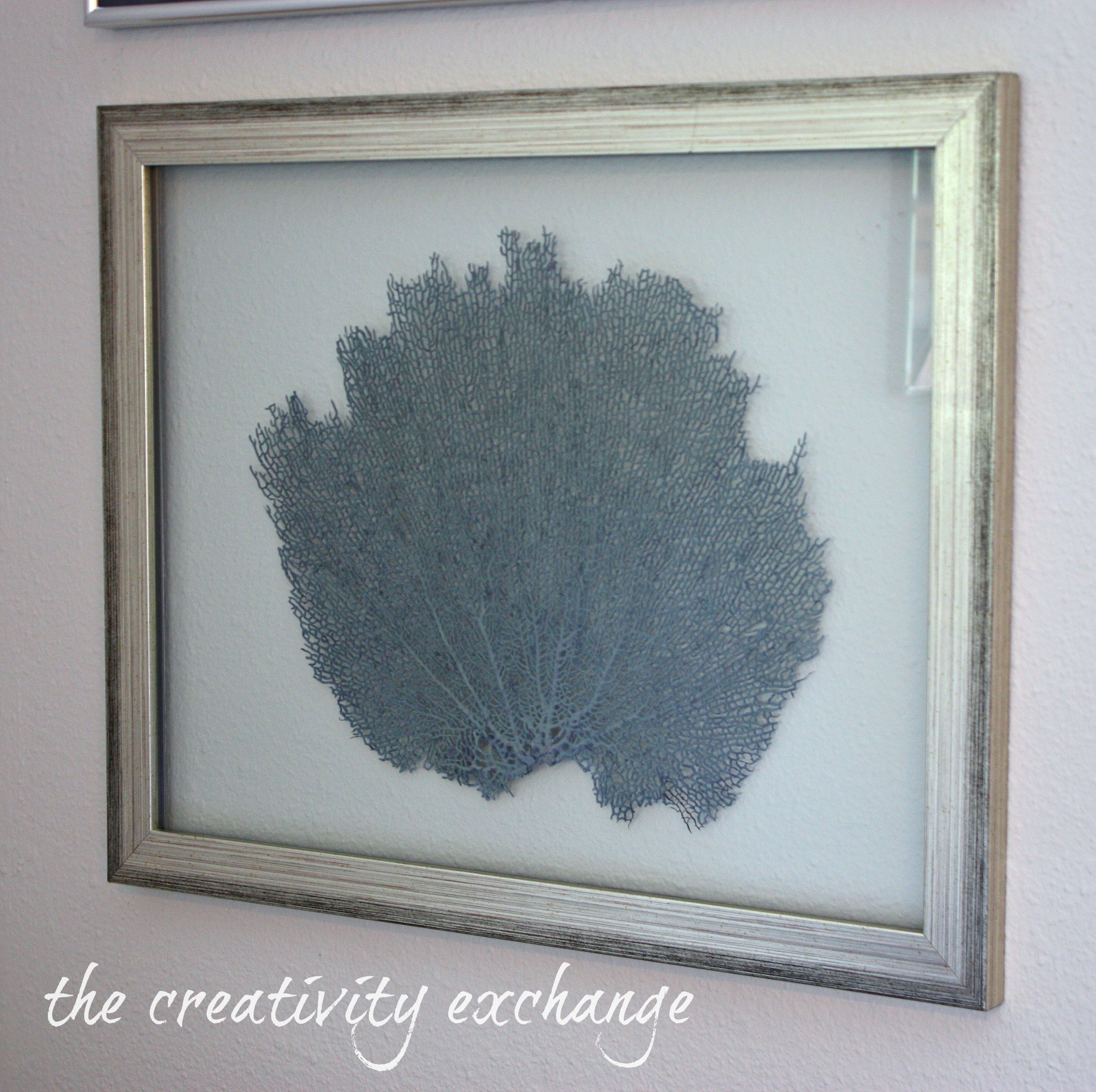 tutorial for how to make double sided glass frames for displaying dyed sea fans or shells