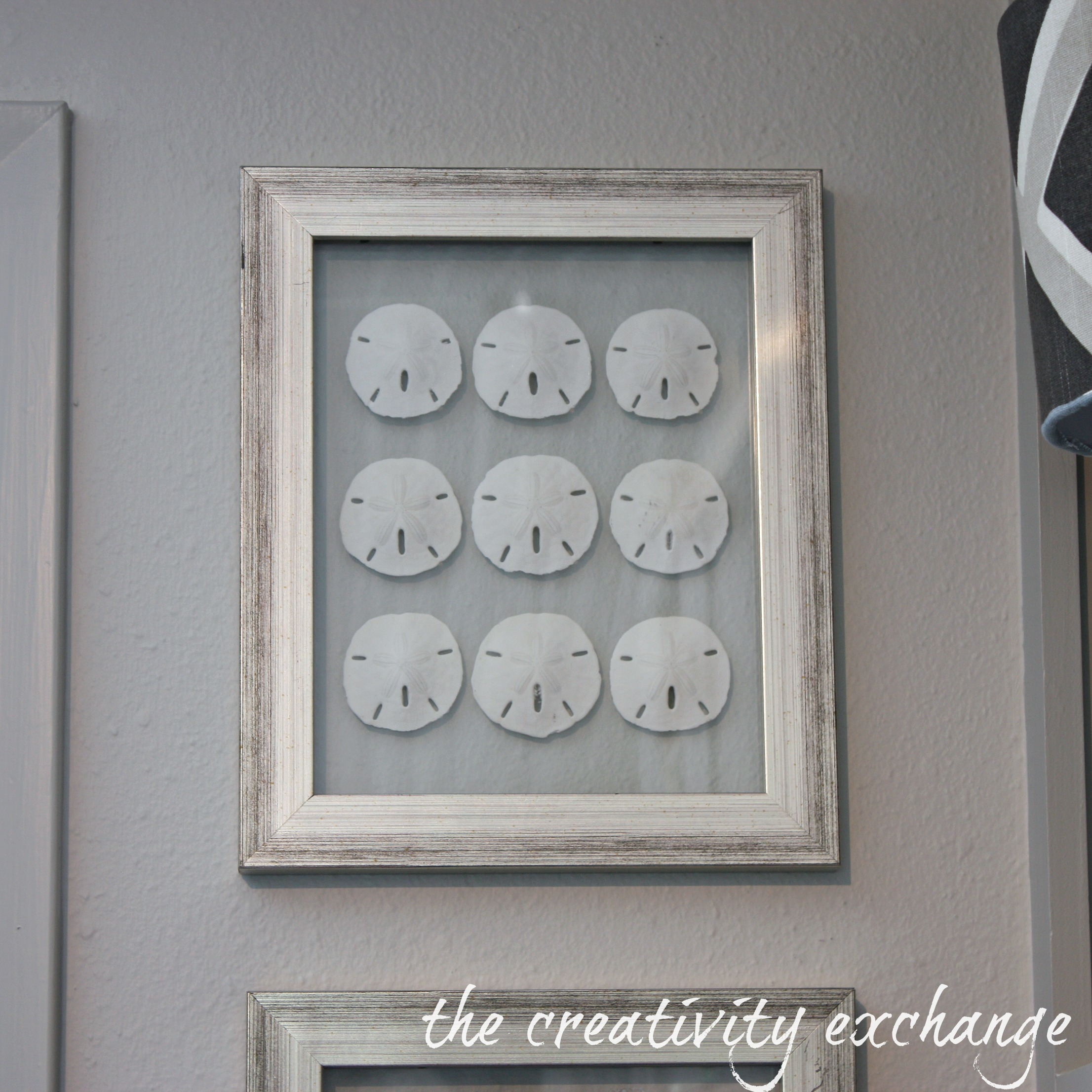 tutorial for how to make double sided glass frames for displaying shell collections the - Double Sided Picture Frame