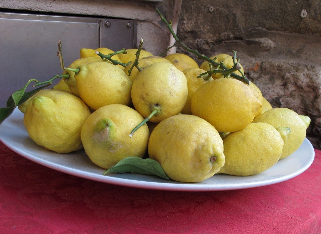 lemon centerpiece (Italy Inspiration)