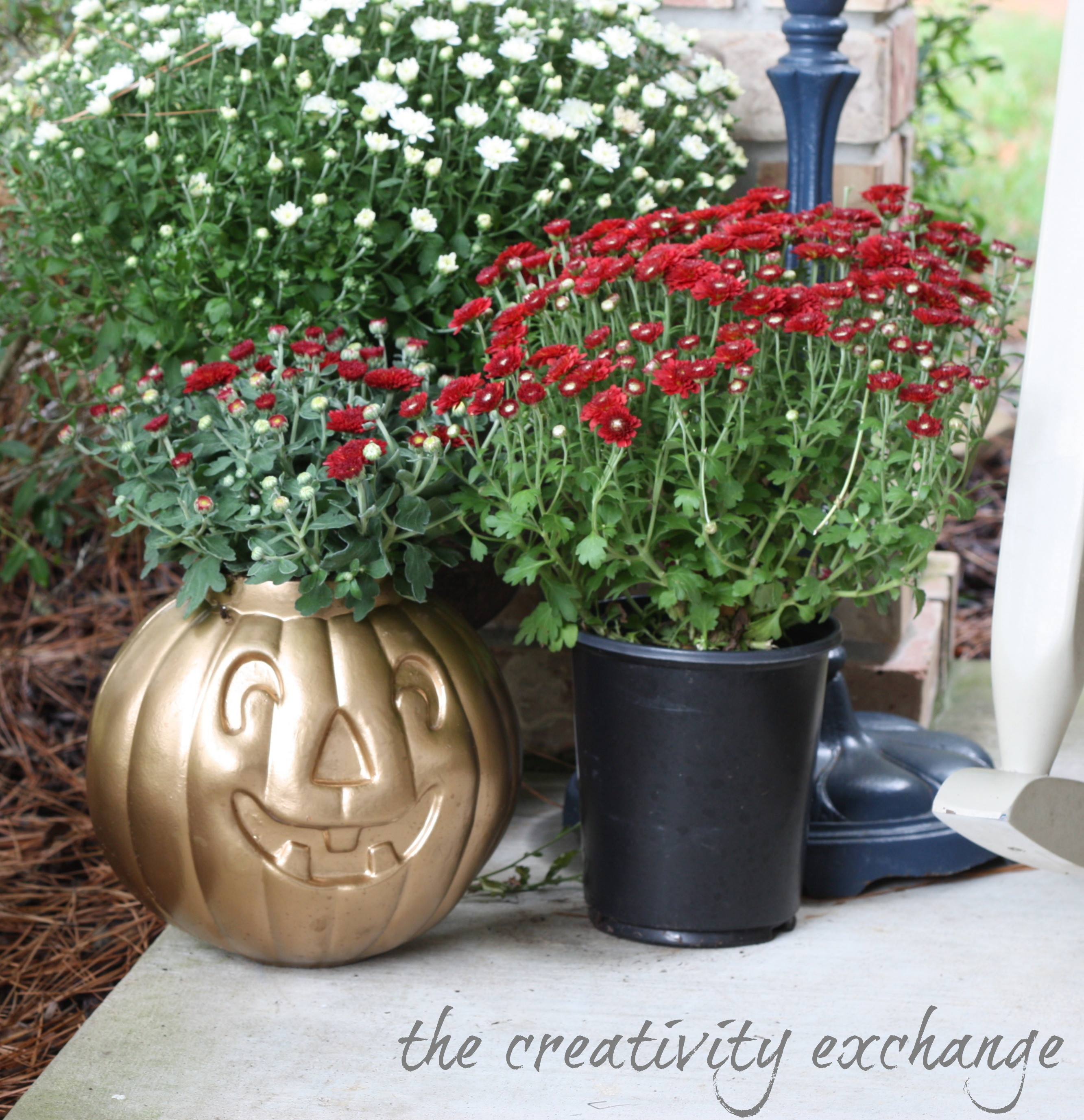 how to make gold plant pots