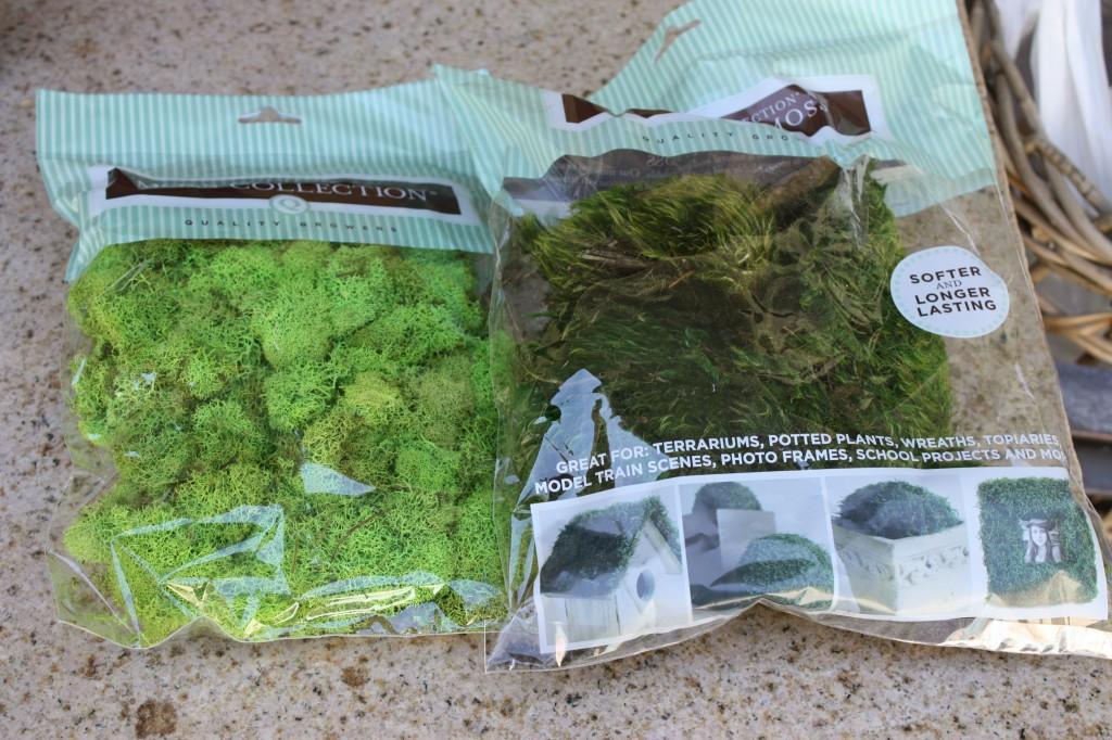 DIY mixed moss wreath (The Creativity Exchange)