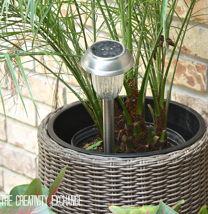 For outdoor entertaining, slip solar lights into plants. Favorite outdoor entertaining ideas from The Creativity Exchange
