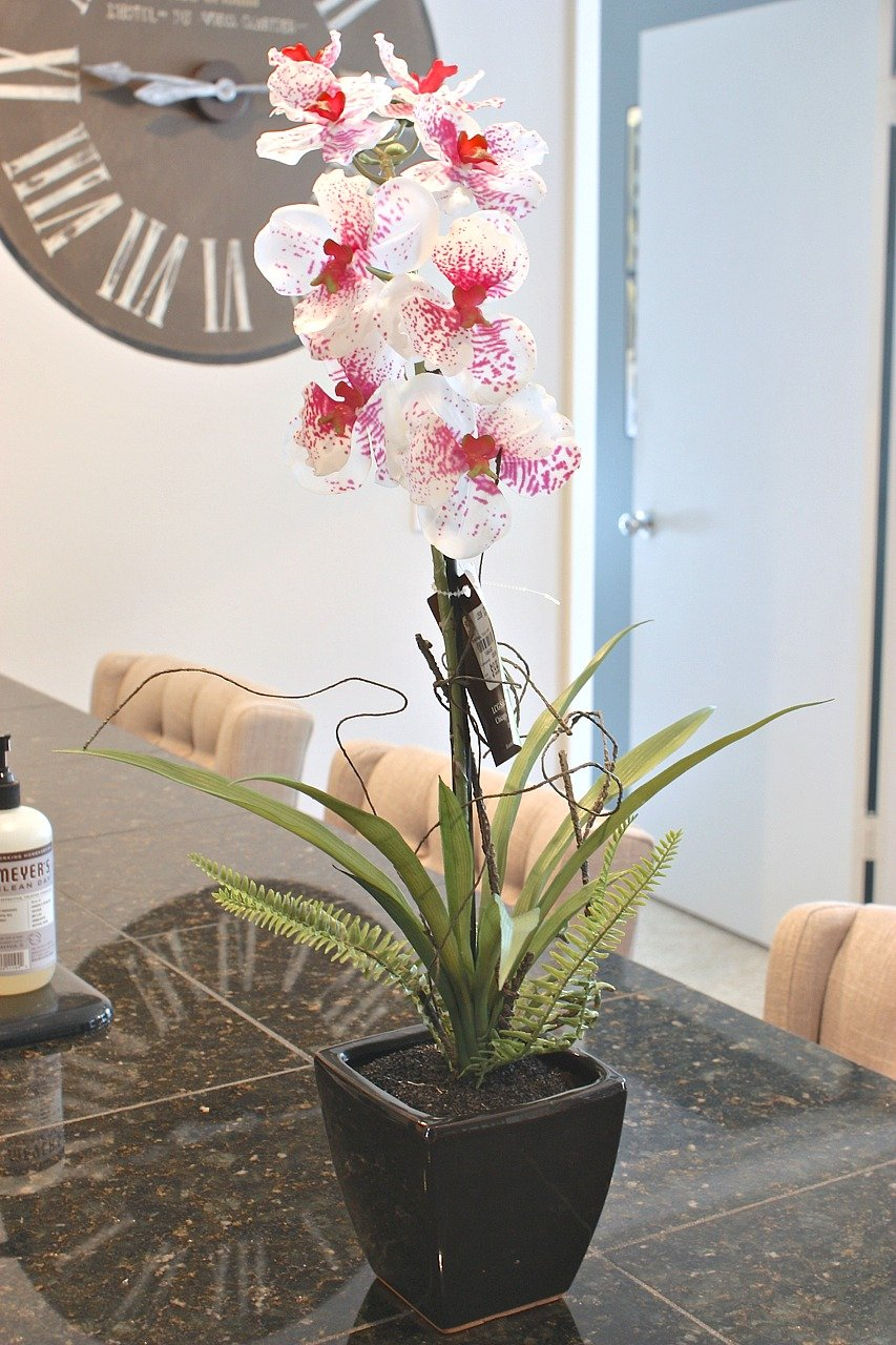 how to repot store silk orchids and make them look real - Silk Orchids