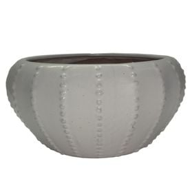 Allen + Roth White Urchin Low Bowl Planter from Lowe's.