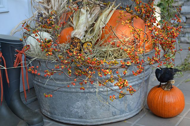Bucket filled with pumpkins