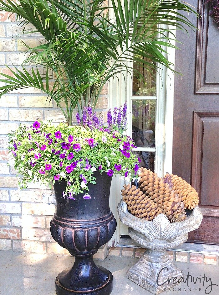 Creative Garden Container Pot Ideas.