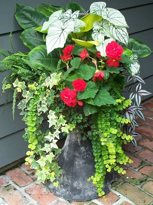 Creative garden container pot combinations and tips for Container gardening ideas