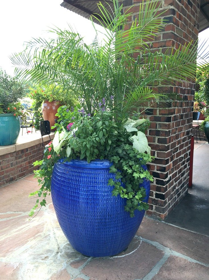 Creative garden container pot combinations and tips - Better homes and gardens flower pots ...