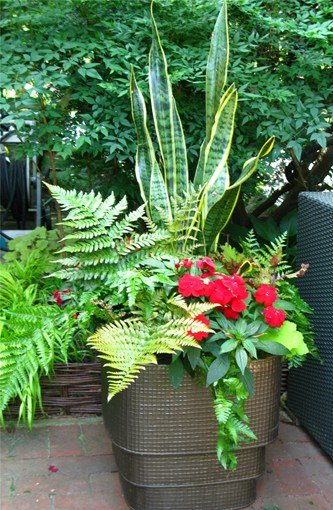 Creative Garden Container Pot Combinations and Ideas