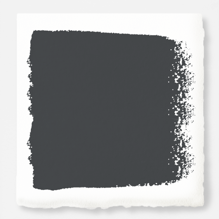 Joanna Gaines from Fixer Upper's new paint line. Color is Blackboard.