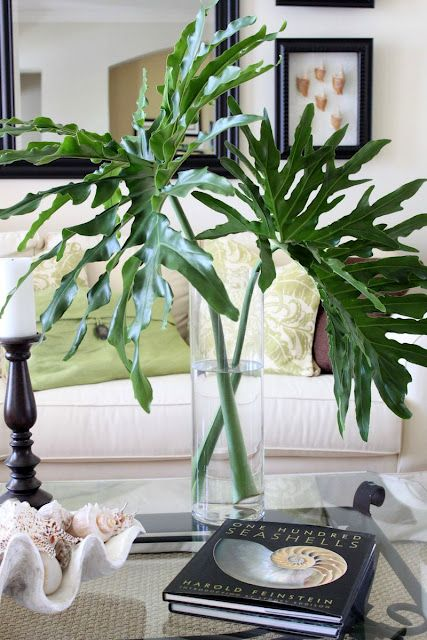 Leaves in tall cylinder vase.