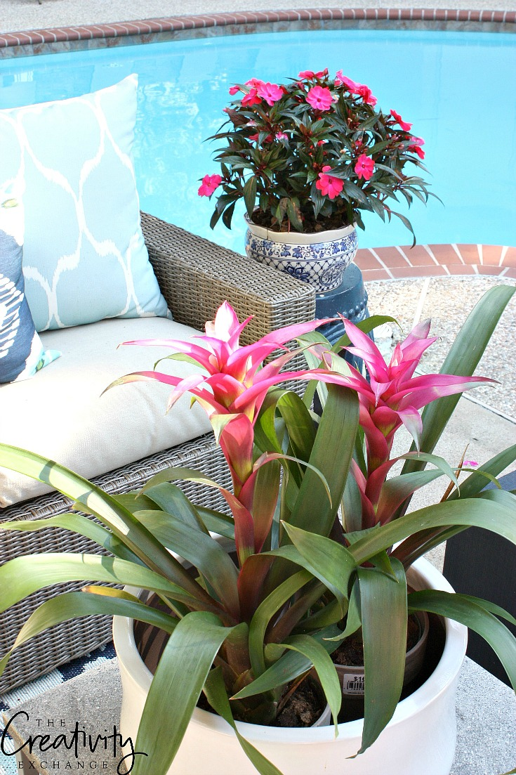 Tips for updating a patio.
