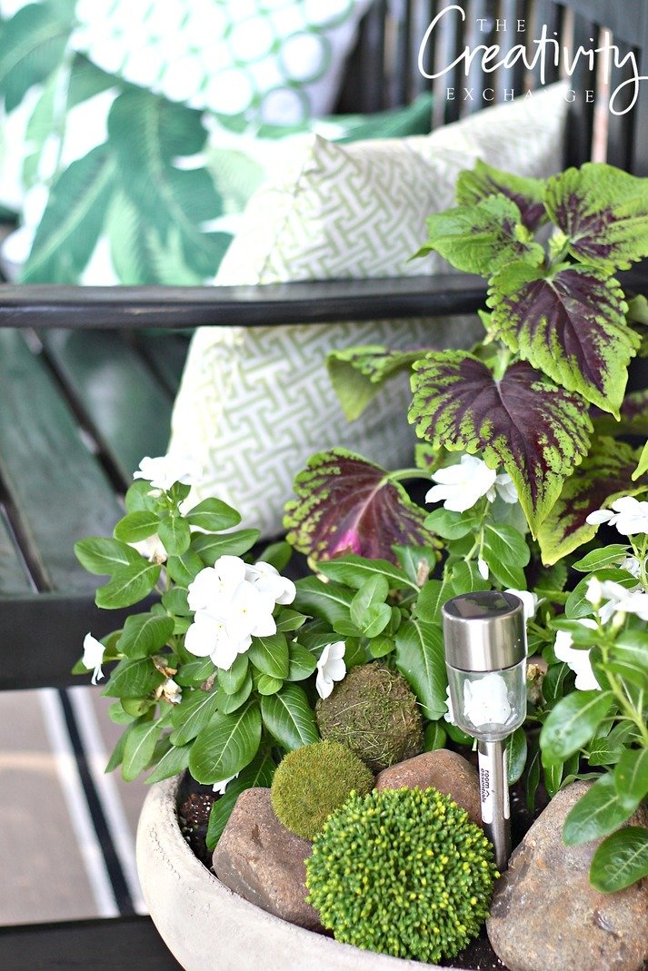 Mix rocks and moss balls into garden pots for added texture. Slip in a solar light for pretty light at night.