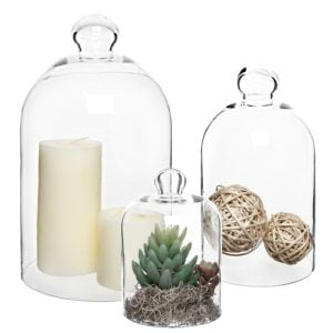 Set of three clear glass cloches in different sizes. Available on Amazon