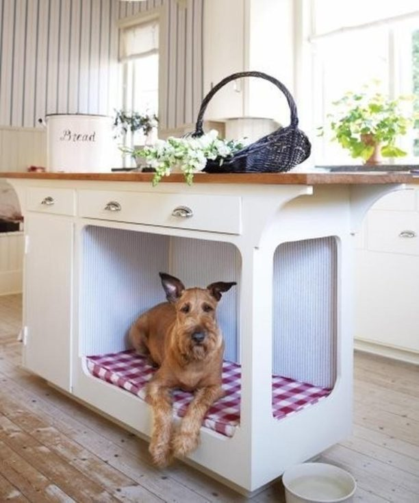 creative ways to incorporate pet items into your home d cor. Black Bedroom Furniture Sets. Home Design Ideas