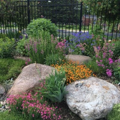 Tips for Landscaping with Rocks and Boulders