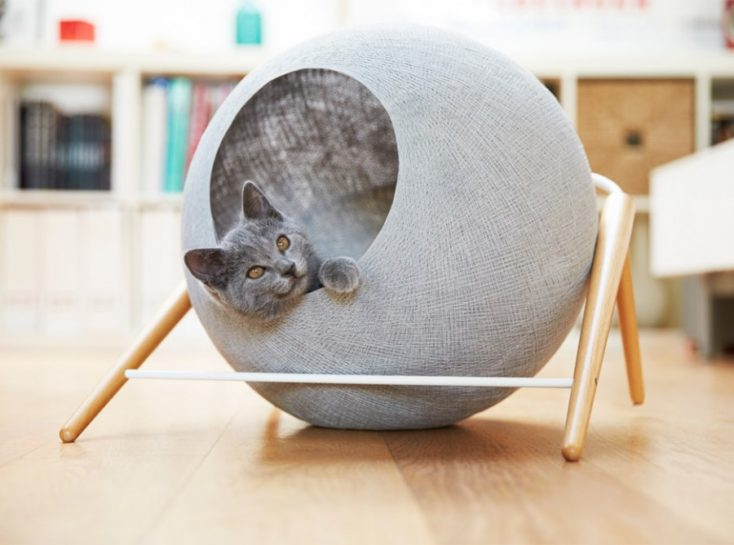 Creative Ways To Incorporate Pet Items Into Your Home D Cor