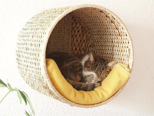 Wall Cat Basket