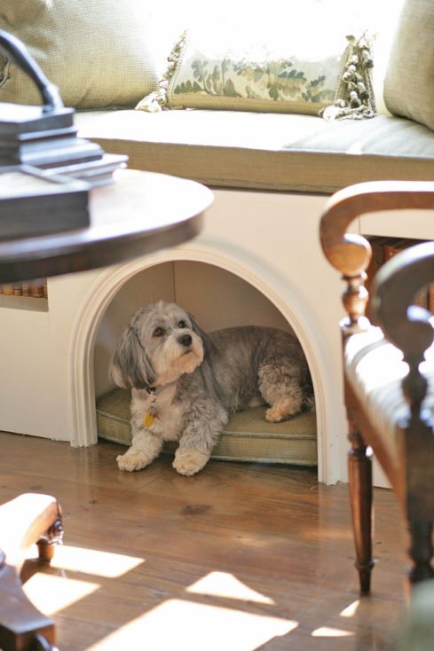 Window Seat Dog Bed
