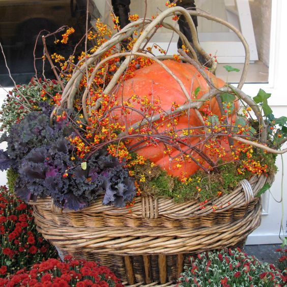 Pumpkin Grapevine Basket