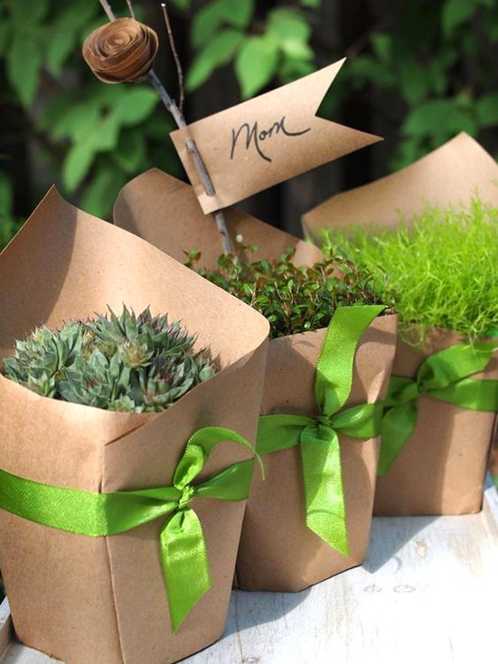 Craft Paper Wrapped Plants