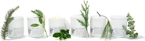 Essential Oil Candles. Oprah's Favorite