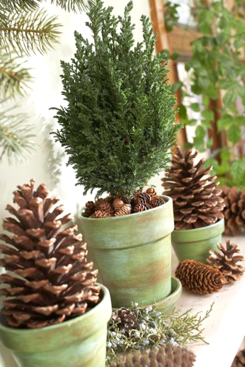 pinecone topiary - Decorating Large Pine Cones For Christmas