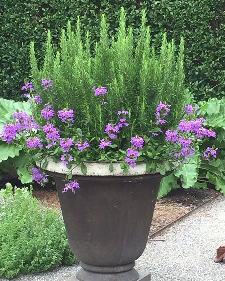 Creative spring garden pots and planters for Garden pot designs