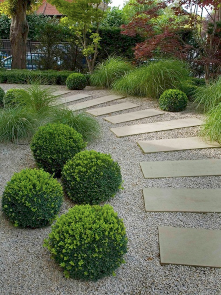 Shrub Path