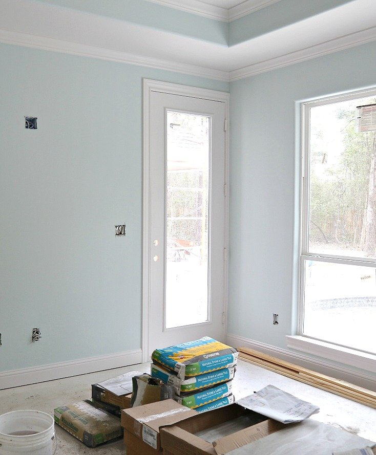 Sherwin Williams Sea Salt Diluted with White 50%