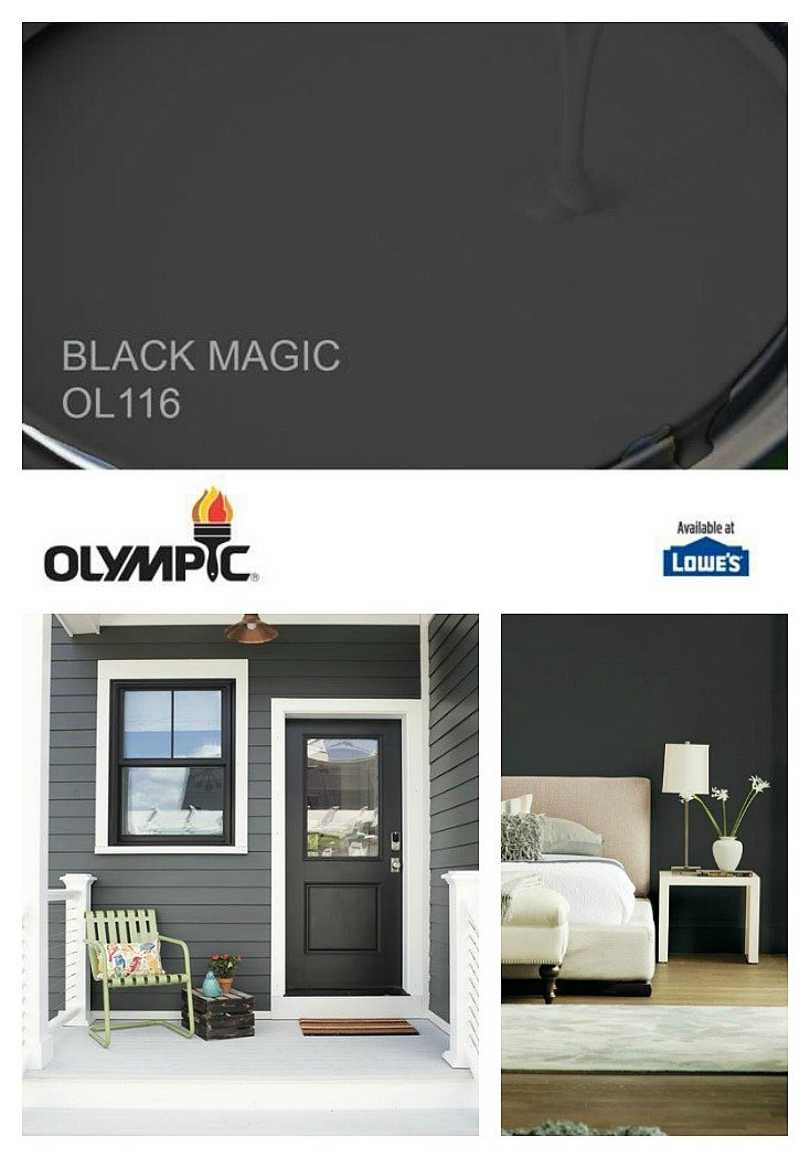 Olympic Paint 2018 Color of the Year is Black Magic