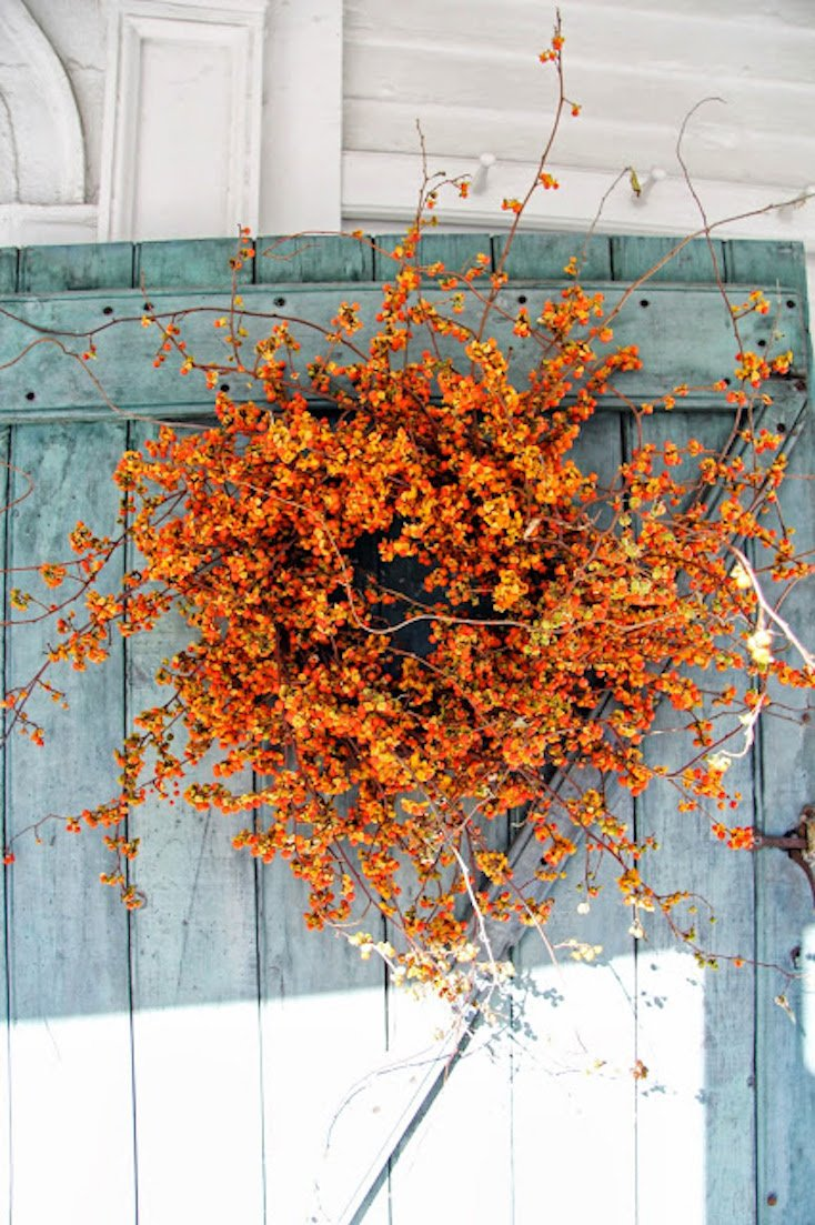 Natural Bittersweet Fall Wreath
