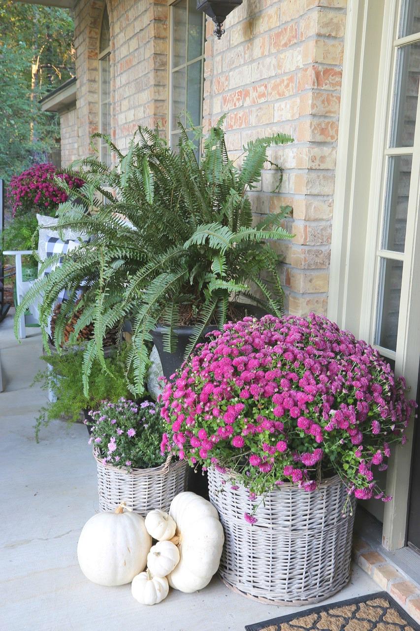Slip plants into baskets for pretty porch decor.