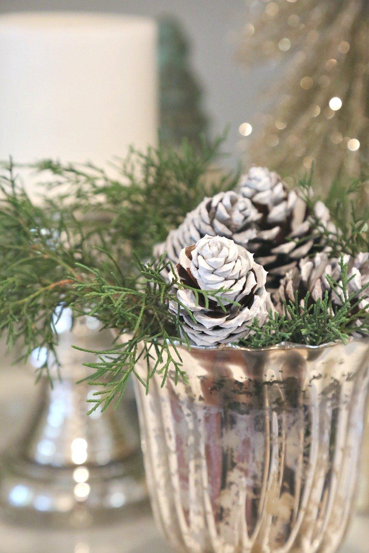 Cedar mixed with pinecones in mercury glass vase
